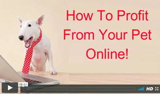 make money from your pet