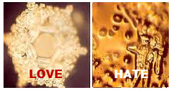 love hate water crystals