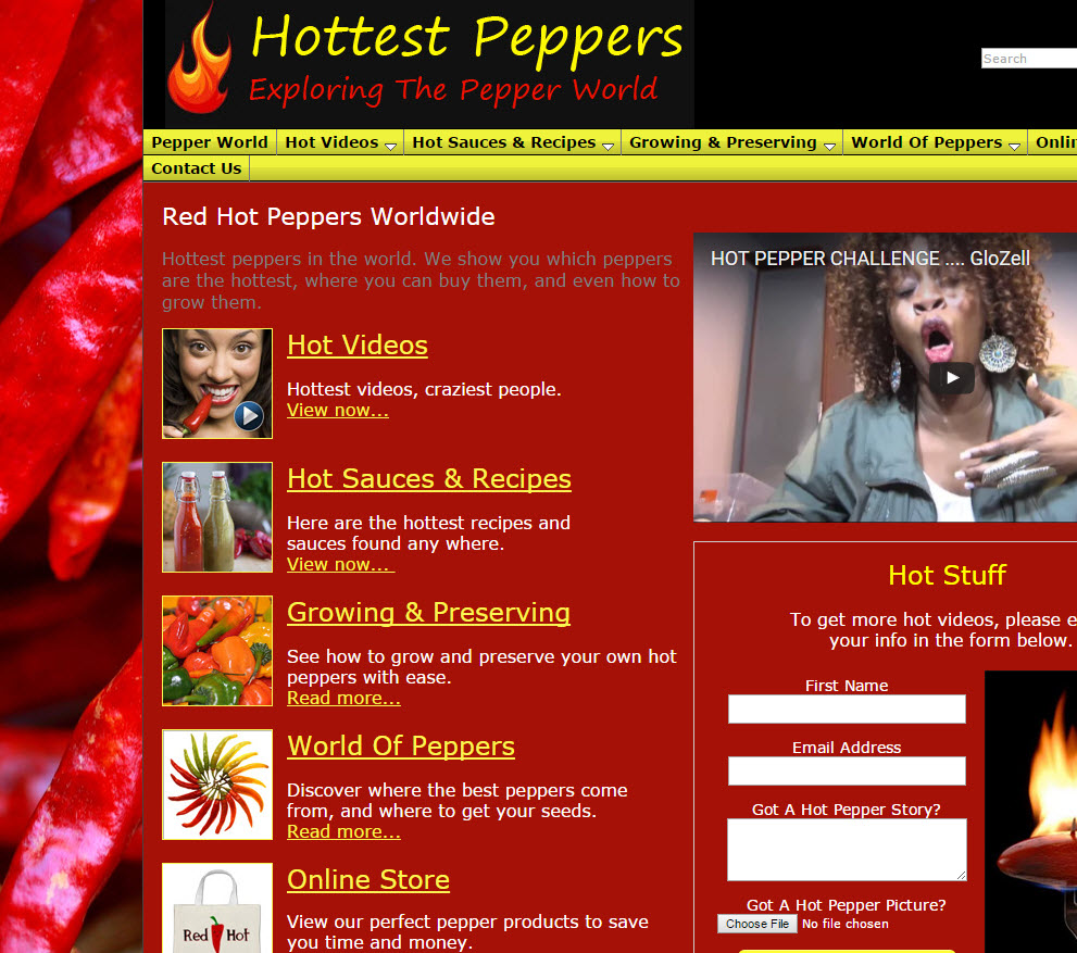 free website Spicy Food Recipes